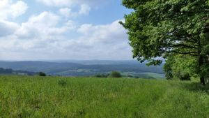 odenwald20160525_170035
