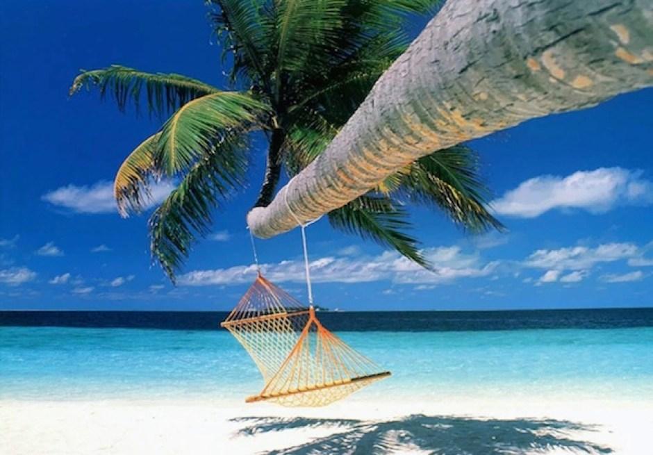 Koh-Samui-palm-tree-hammock
