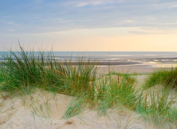 Camber Sands, home of The Gallivant