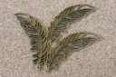 Plumes 70x25mm, Emballage de 3 plumes, 2.90$