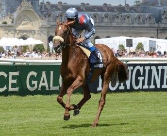 splendide-cheval