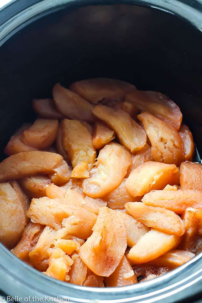 This Crockpot Cinnamon Applesauce is super easy to make and only requires four simple ingredients!It's the perfect snack and tastes amazing when it's warm!