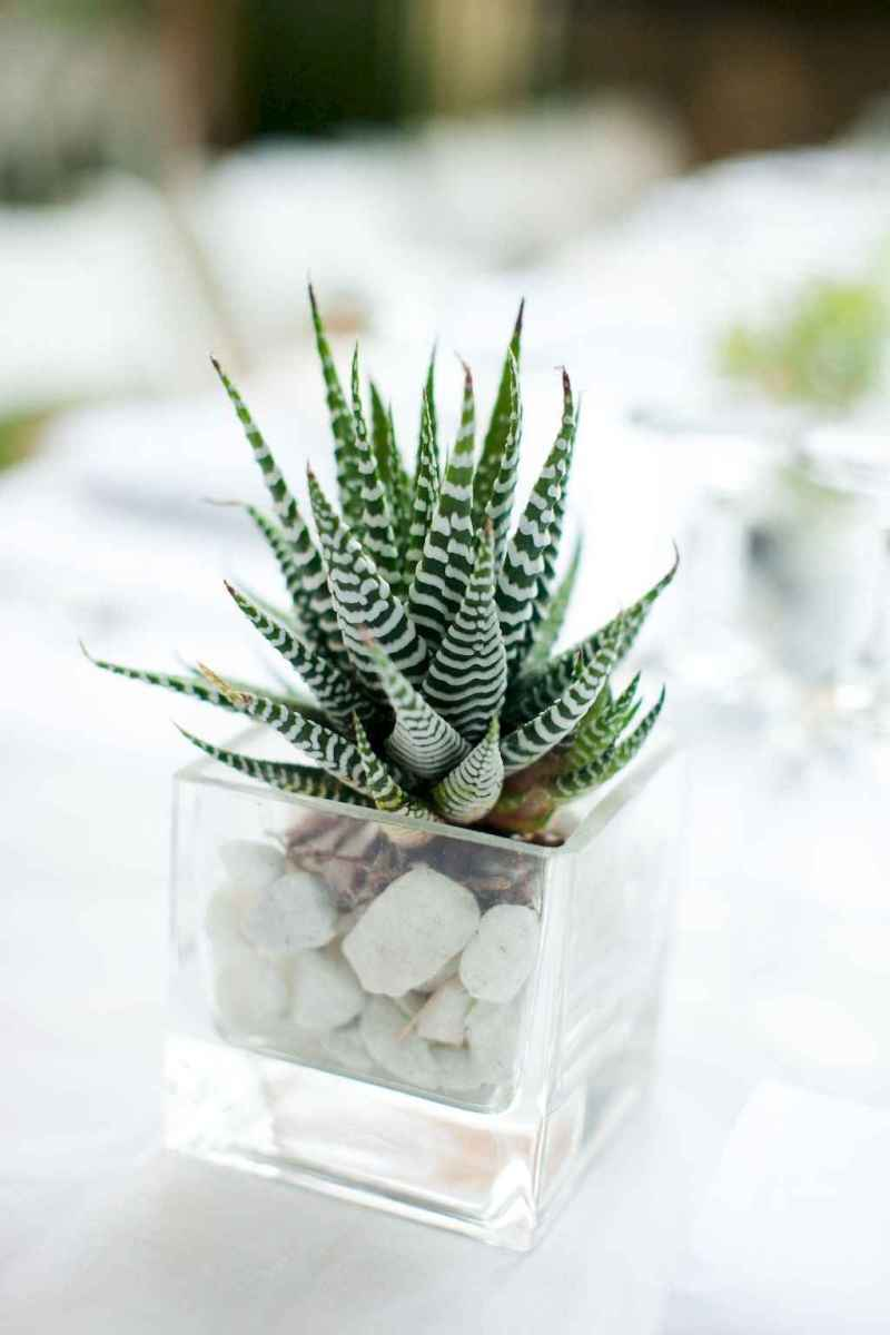 50 Simple and Easy Wedding Centerpiece Ideas