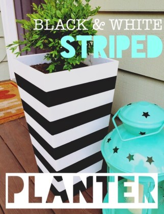 Black   White Striped Planter     Belling On A Budget As I m sure you can tell by now  I m pretty obsessed with black and white  home accents  I especially love the look of black and white decor used  outdoors