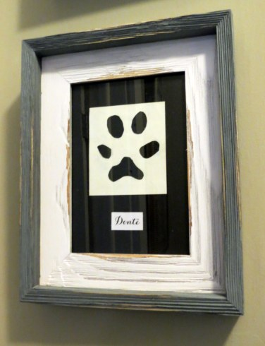 Framed Animal Paw Prints - Donte's Paw
