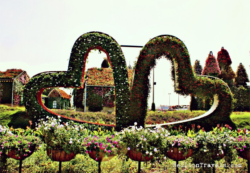 miracle-garden-02