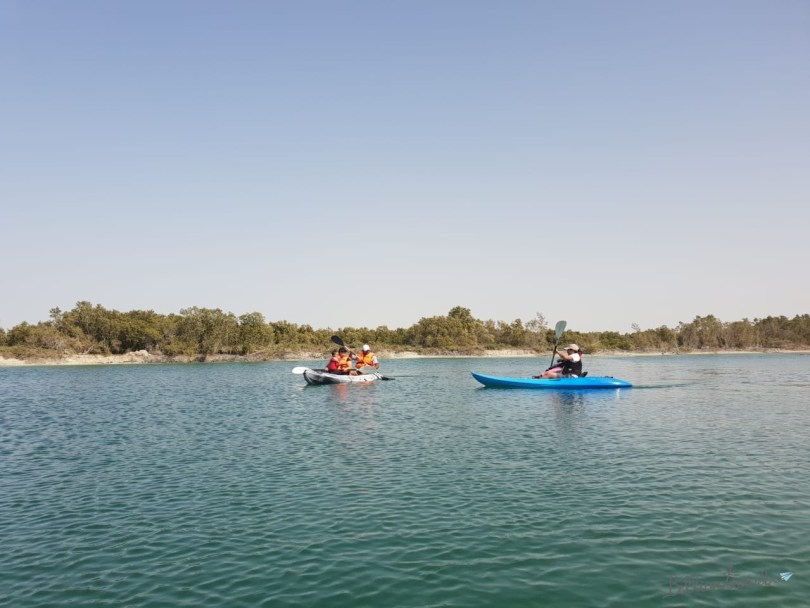 Kayaking Eastern Mangrove01.jpg
