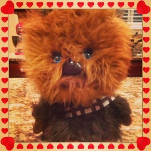Chewbacca Makes Everything Better