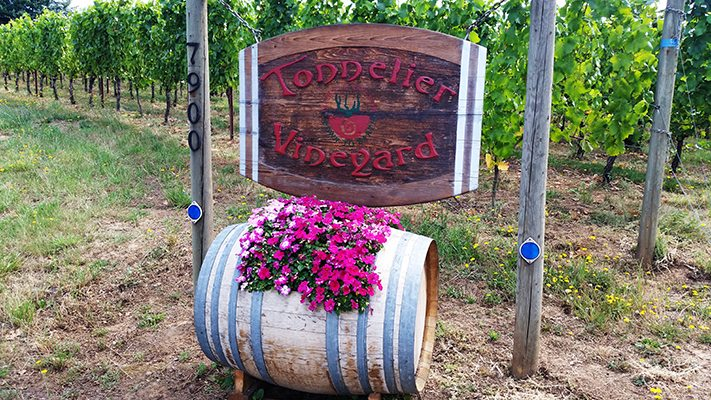 Tonnelier Vineyard's Yamhill-Carlton AVA sign.