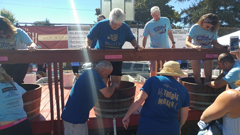 Bells Up Winery's Treble Maker team in the 2016 Carlton Crush Grape Stomp Competition.