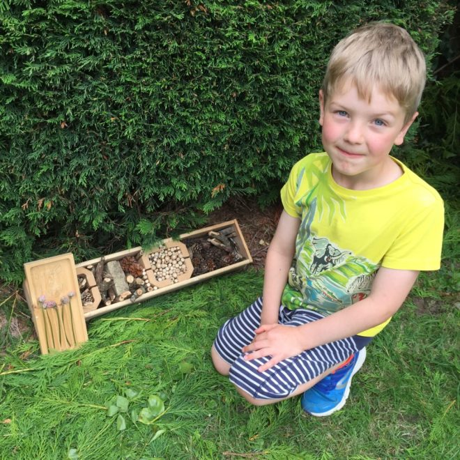 Finlay and bug hotel