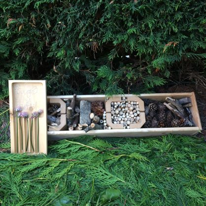 30 Days Wild – Day 17 – Bug Hotel