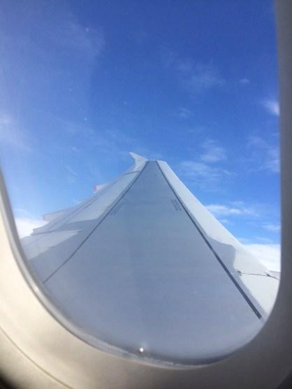 30  Days Wild – Day 28 – Wild on a Plane