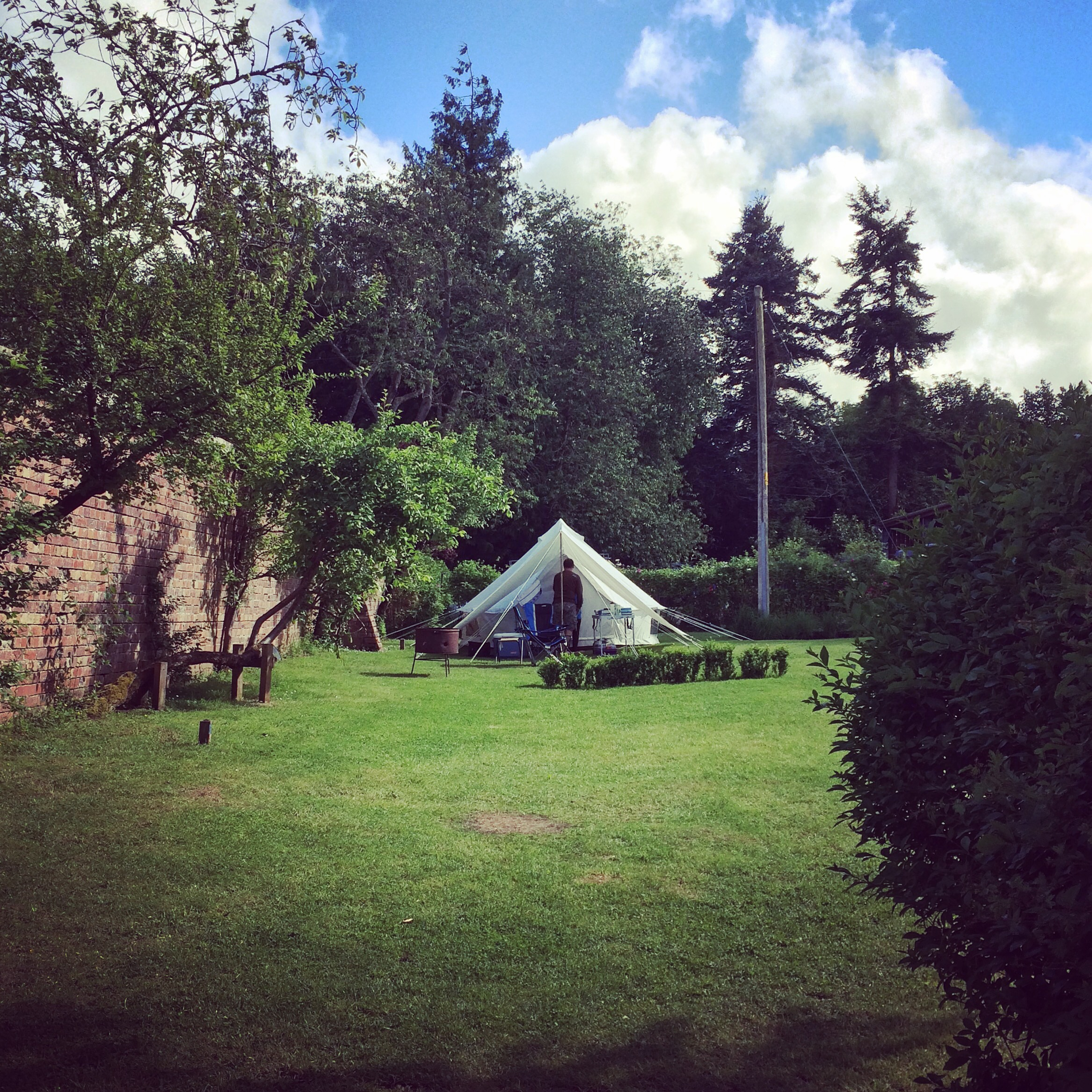 Bell Tent pitched in the Walled Garden at Ruberslaw Wild Woods camp ground, Hawick, Scottish Borders