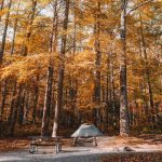 8 Tips For Your First Family Camping Trip