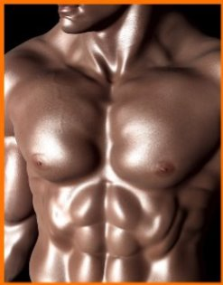 Belly Fat Loss bodybuilding 1 Enhance Your Bodybuilding Diet Belly Fat Loss Review  Bodybuilding Yoga Bodybuilding Workouts Bodybuilding Workout Log Bodybuilding Women Bodybuilding Weight Loss Bodybuilding Vegetarian Bodybuilding Upper Body Bodybuilding Training Bodybuilding Snacks Bodybuilding Quick Meals Bodybuilding Program Bodybuilding Pre Workout Bodybuilding Nutrition Bodybuilding Natural Bodybuilding Meal Plan Bodybuilding Lower Chest Bodybuilding How To Cut Bodybuilding How Much Water Bodybuilding Hamstrings Bodybuilding Guide Bodybuilding For Beginners Bodybuilding Foods Bodybuilding Diet Bodybuilding Back Exercises Bodybuilding At Home Bodybuilding Arms Bodybuilding Arm Workout Bodybuilding Abs bodybuilding   Image of bodybuilding 1