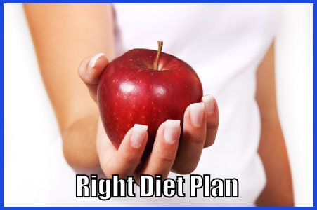 The Right Diet Plan
