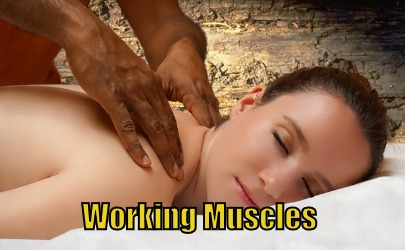 working muscles