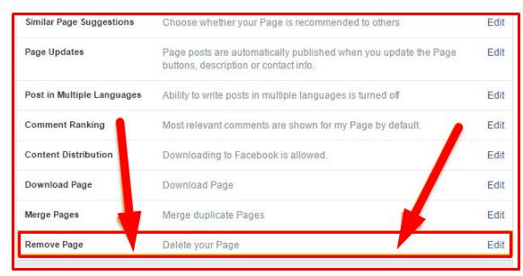 Permanently Delete Facebook Page