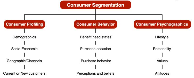 segmentation and consumer profile