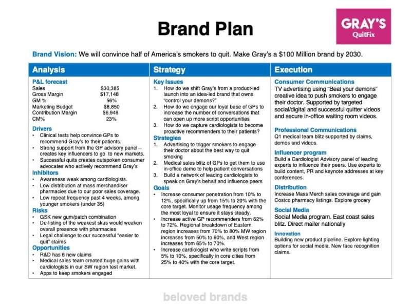 Healthcare Brand Plan example