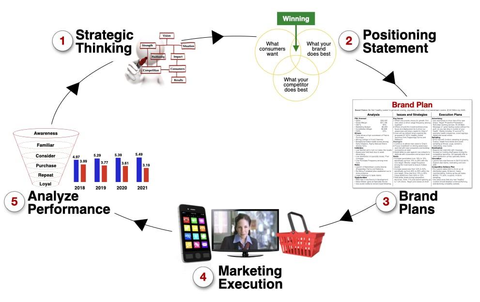 brand management model