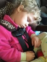 still sleeps on long drives