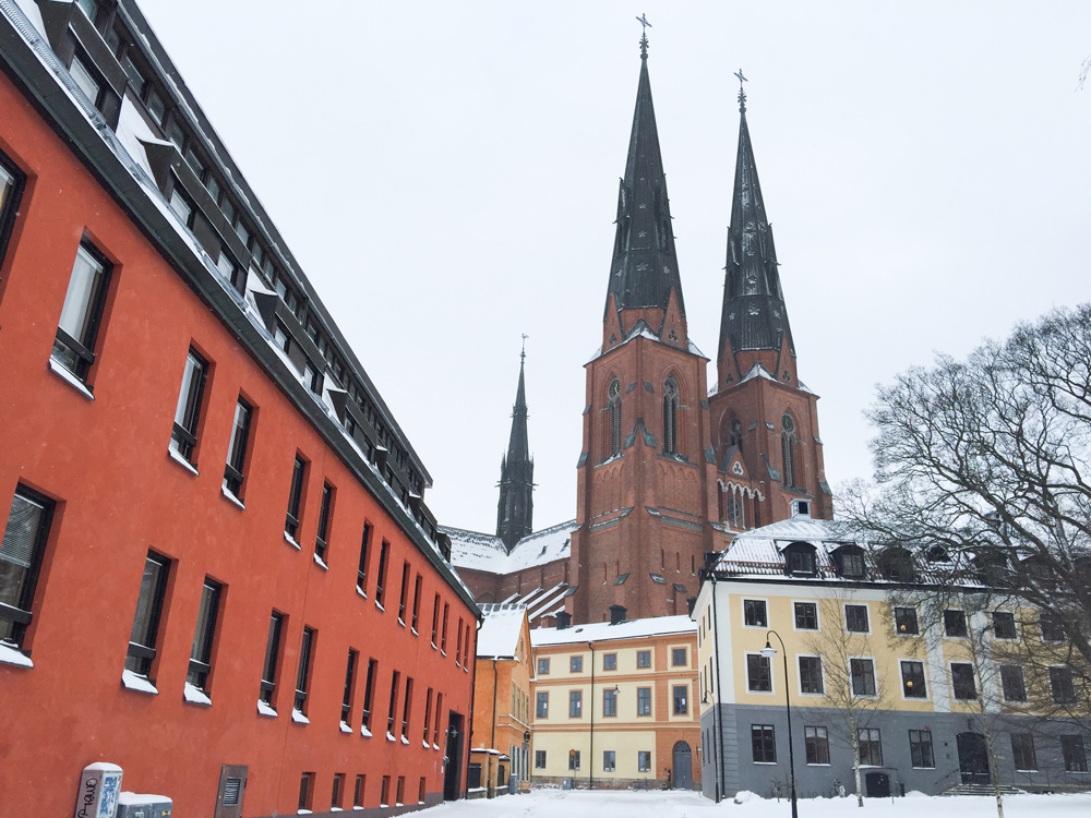 snow-cathedral