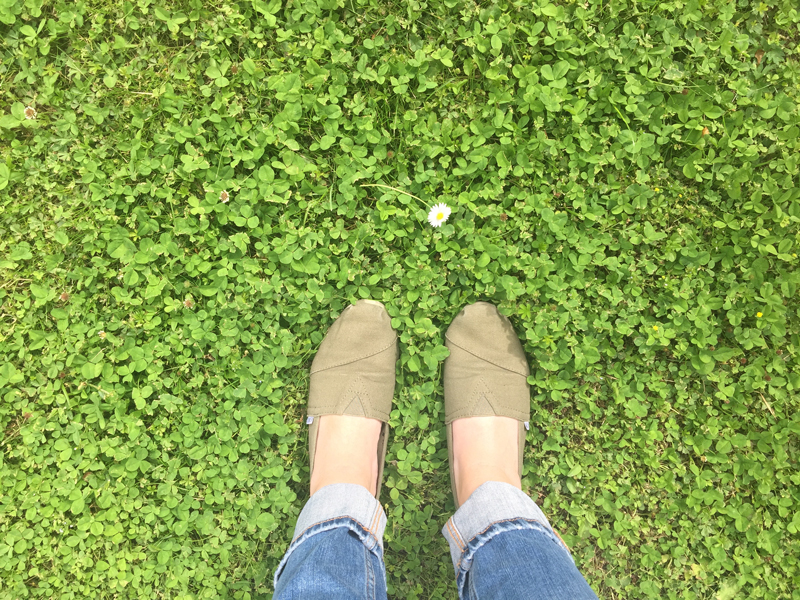 toms-shoes-grass