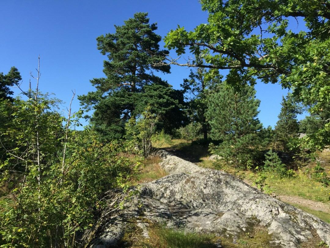 sigtuna-nature