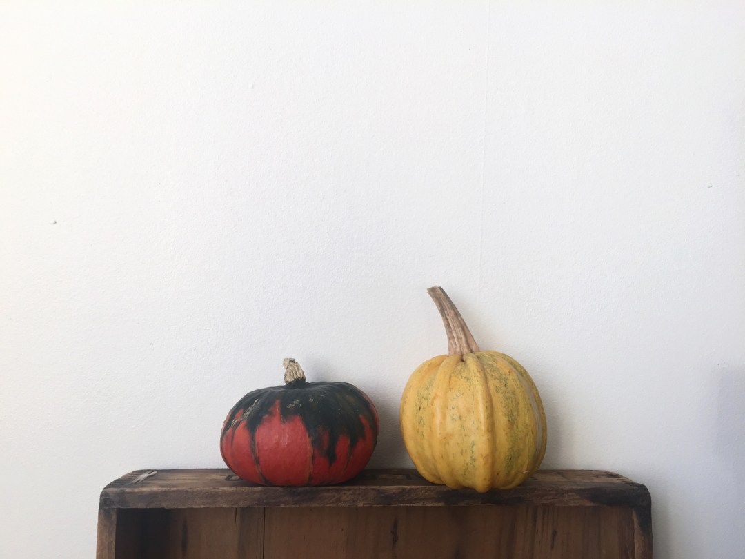pumpkins-home-