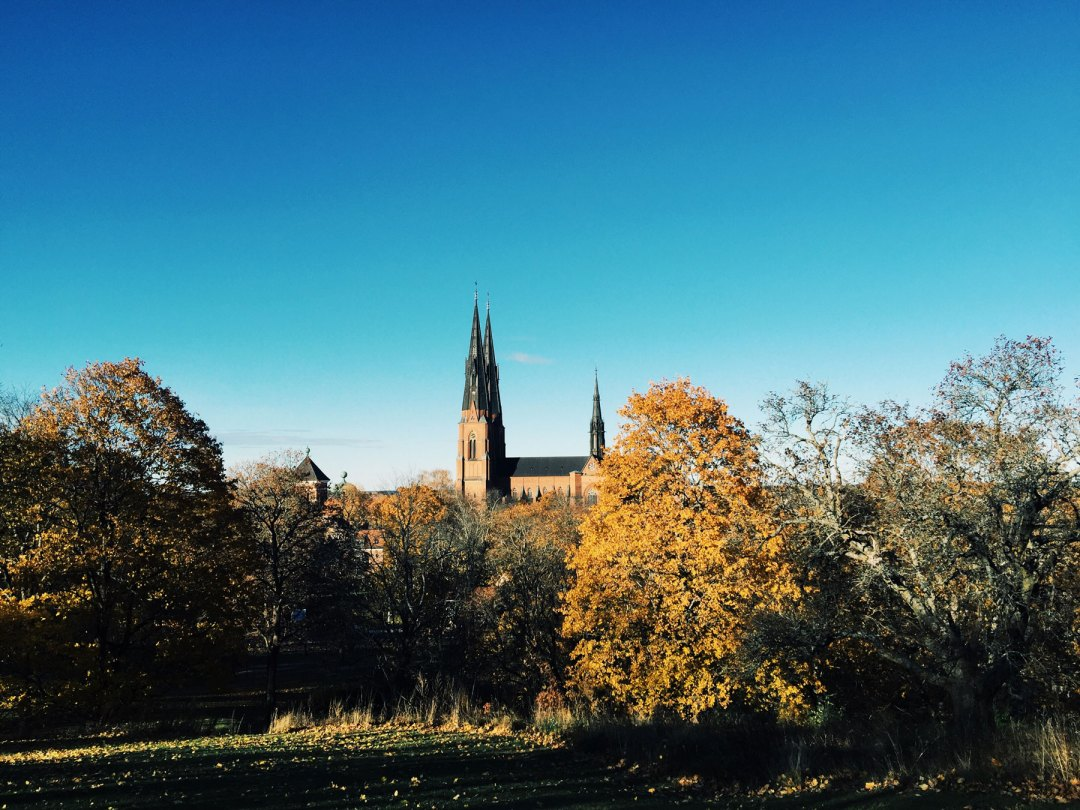 uppsala-cathedral-view