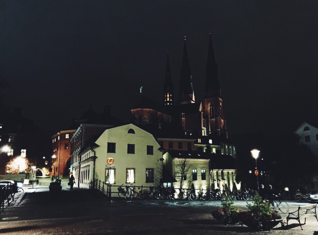 uppsala cathedral downtown