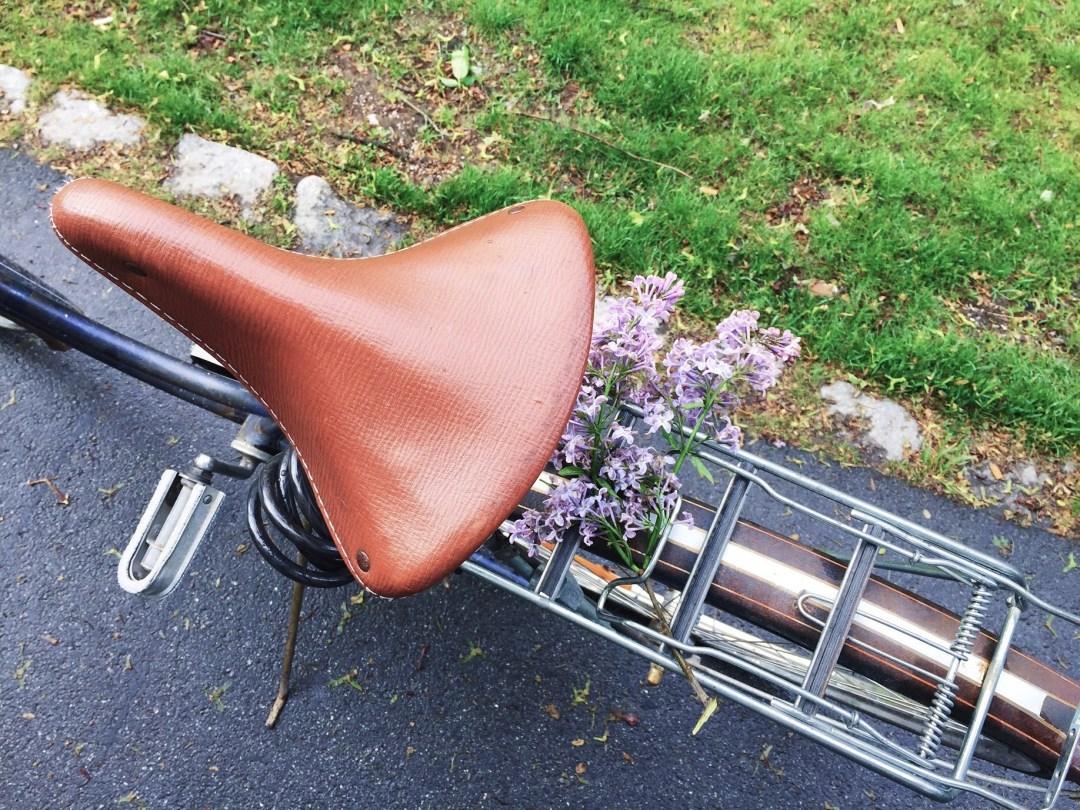 bike lilac