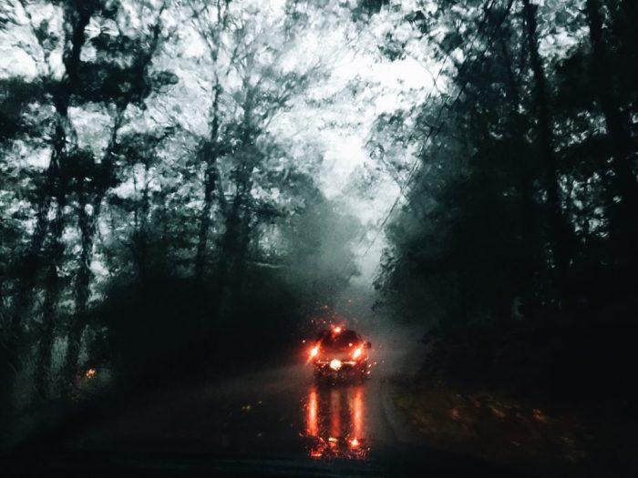 New Hampshire woods storm