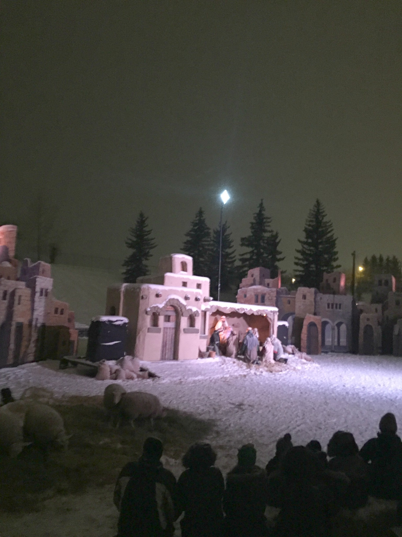 calgarylivenativity