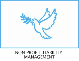 Non Profit Liability Management T