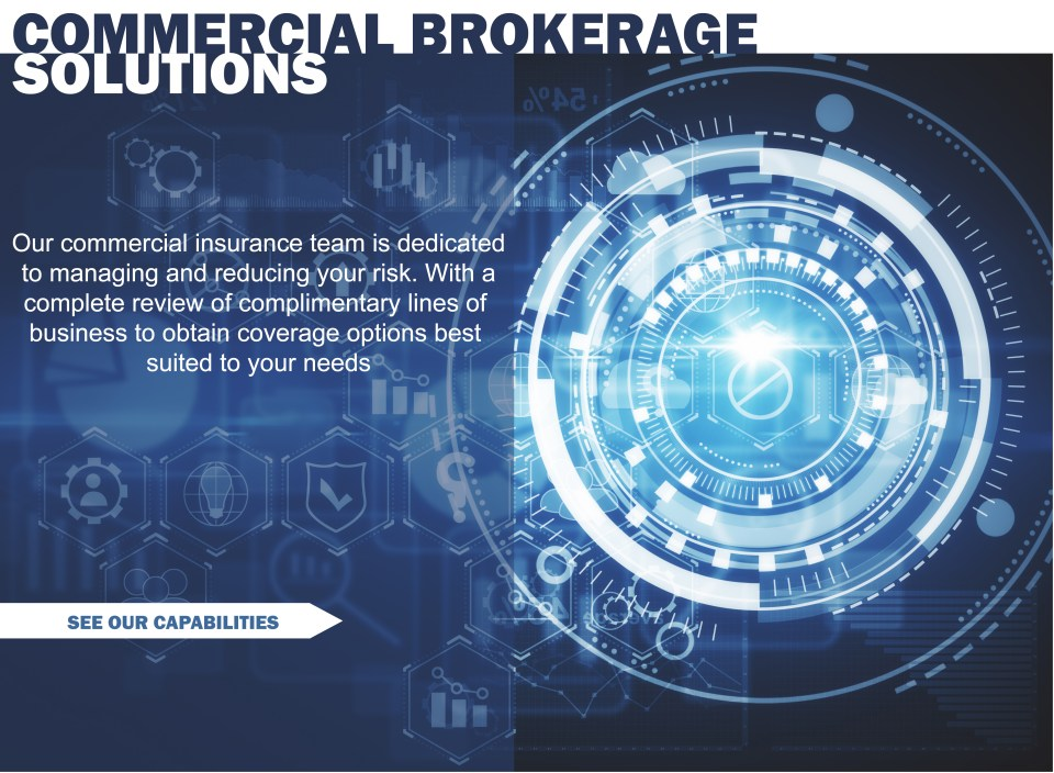 Web Commercial TEXT 2