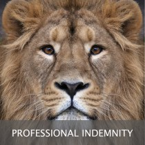 Puzzle tile Professional Indemnity