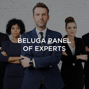 our-partners-beluga-panel-of-experts