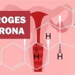 Progesterona: o que é, função, baixa, alta, na gravidez, engorda?