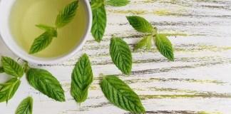 A hortelã é uma das ervas mais refrescantes para fazer chá