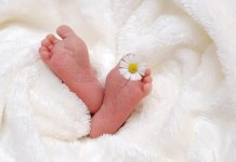 Coisas que você deve saber sobre os recém nascidos