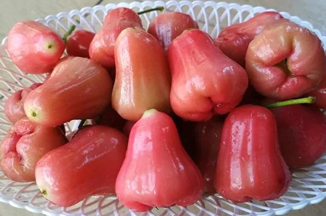 Jambo: 9 benefícios do consumo desta fruta