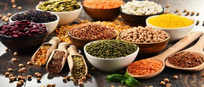 Principais Fontes de Proteína Vegetal