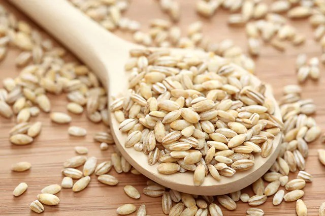 A cevada é um dos carboidratos bons para sua dieta