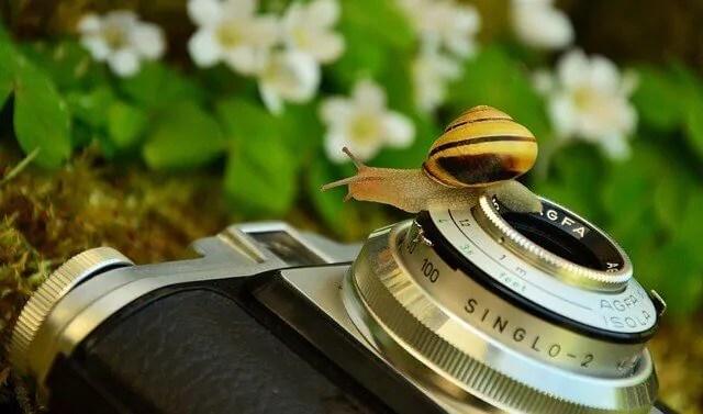 Benefícios da fotografia