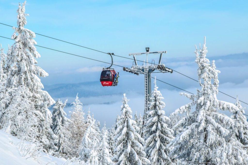 fun things to do in korea: Skiing and Snowboarding in Vivaldi Park South Korea