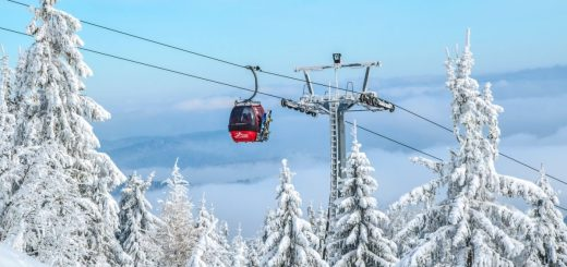 fun things to do in korea: Skiing and Snowboarding in Vivaldi Park South Korea