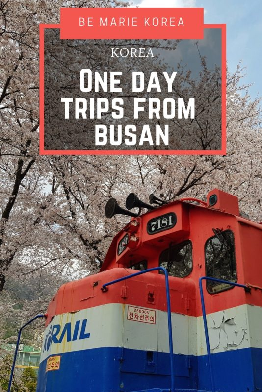 day tour from busan